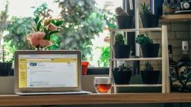 כיצד דיוור אלקטרוני יכול לעזור לעסק העונתי שלכם
