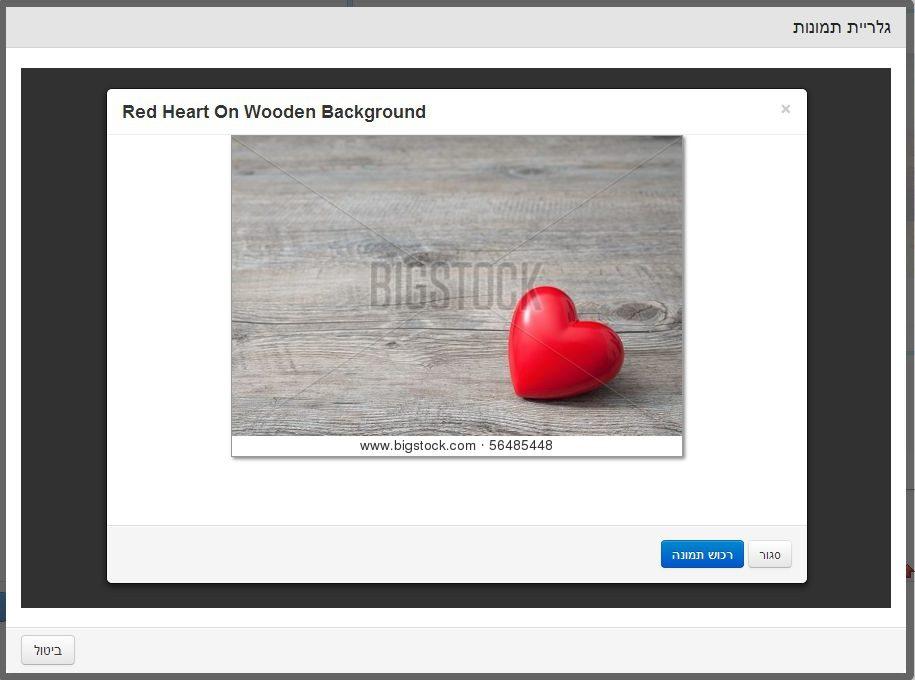 צילום מסך ממאגר התמונות של Big Stock Photo