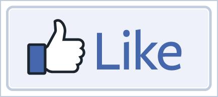 פייסבוק בעמוד נחיתה