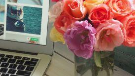 10 דוגמאות לניוזלטרים אביביים ומוצלחים בתחום האי-קומרס